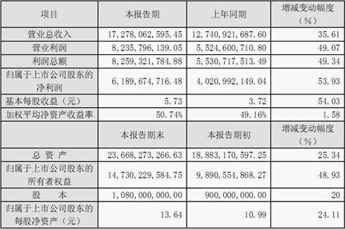 洋河酒业2012年度财务报表