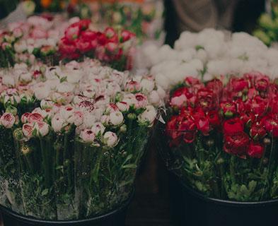 花店的节日促销,花束做好就要交给 客户,想做新款展示却赶不上