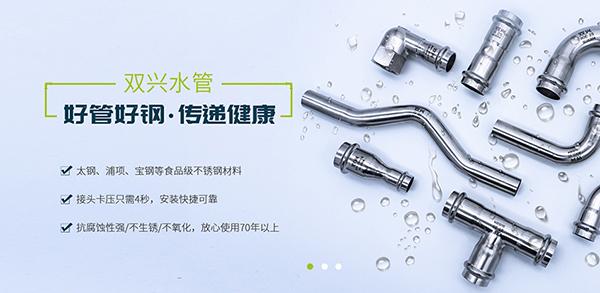 广东双兴新材料集团有限公司-营销型网站案例展示