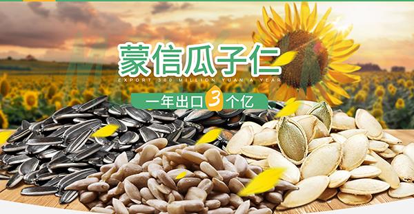 五原县诚信粮油食品有限责任公司-营销型网站案例展示